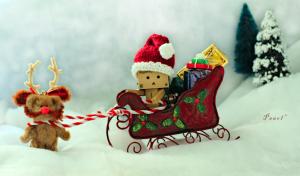 Santa Mini Claus